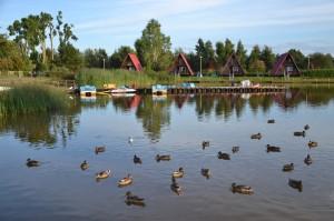Jezioro Resko- Dźwirzyno