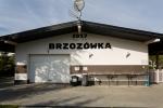 pod brzozami_038